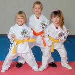 Занятия каратэ-до Сито-рю для детей