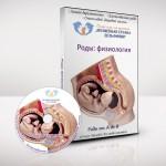Аудиокурс для будущих родителей «Роды. Физиология»